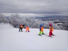 sporticus ski kamp
